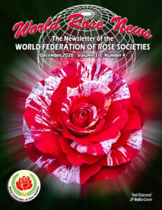 World Rose News